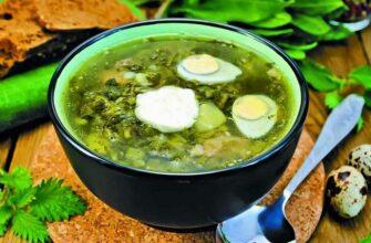 Зелений борщ з щавлем і кропивою - відмінний рецепт