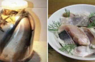 Маринований оселедець - рецепт приготування
