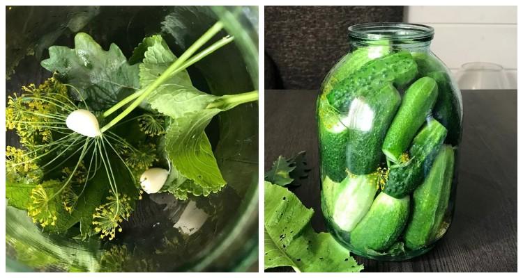 Хрусткі солоні огірки за маминим рецептом